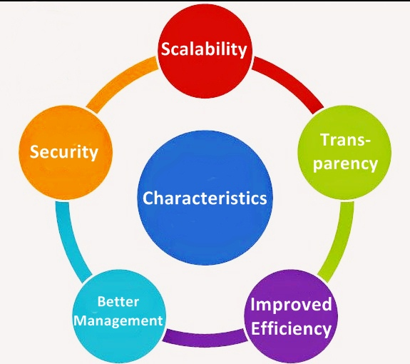 Characteristics of Enterprise Solutions