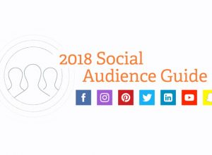 2018 Social Audience Guide