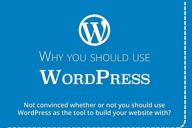 Use WordPress for Your Business Website