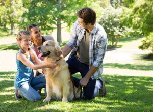 Keep Your Pets in Good Health