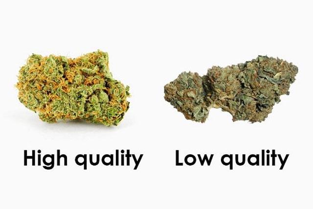 Low-Quality