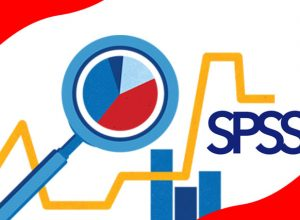 Importance of SPSS in Data Analysis