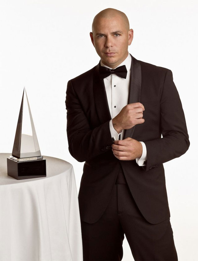 Pitbull Awards in Musical Profession