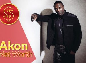 Akon Net Worth 2020 – Biography, Wiki, Career & Facts