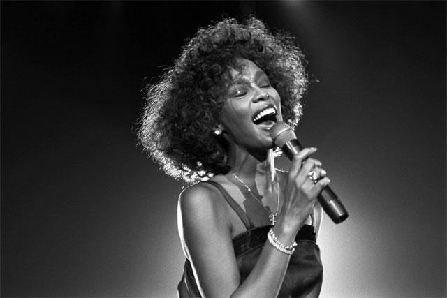 Whitney Houston Professional Career