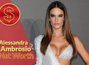 Alessandra Ambrosio Net Worth 2021 – Biography, Wiki, Career & Facts